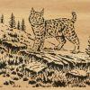 038-bobcat
