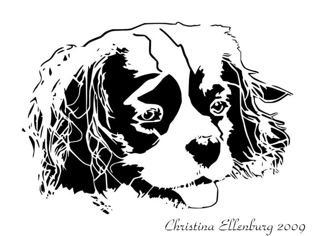 King Charles Cavalier Coloring Pages