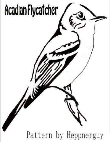Acdian Flycattcher