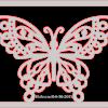 Butterfly framed 2