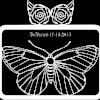 Butterfly & Rose frame