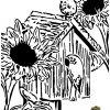 Bluebirds With Sunflowers