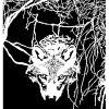 wolf In Den